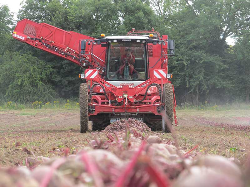 Precision agriculture at Stan White Farms, leading Beetroot suppliers in the UK